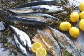 Laks mager eller fet fisk