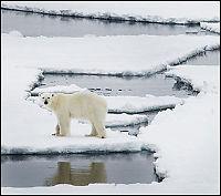Disse tror minst på klimatrusselen