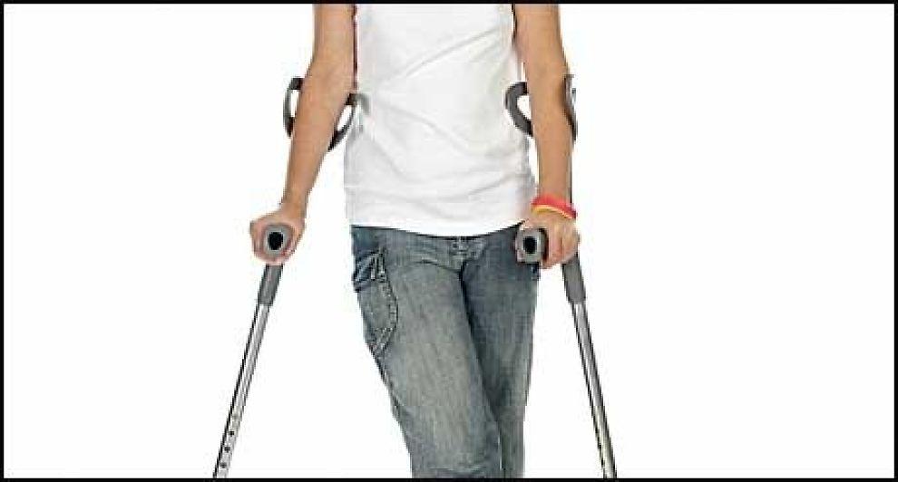 NY STUDE: Nå skal hofteplagene undersøkes. Foto: Stockxpert