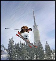 OSLO-VINTER: Ski- og snowboardkjørere kan boltre seg på Tryvann i Oslo. Og i barnebakken leker elgen Elge med barna. Foto: SCANPIX.