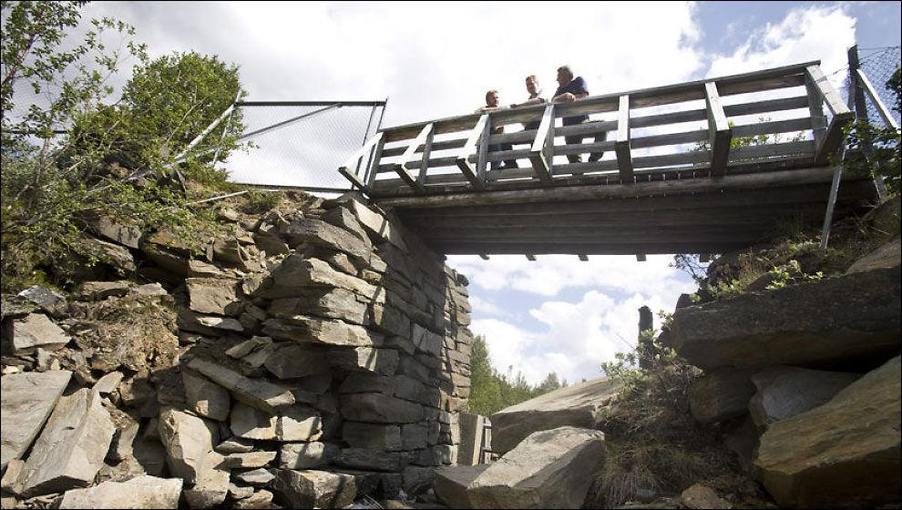 SYKKELBRO: Gamle veier og broer over Dovre skal rustes opp, lover ordfører Bengt Fasteraune, næringskonsulent Hans B. Talleraas og Finn Bjormyr fra Statens Naturoppsyn. Foto: Thor Nielsen.