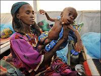 Halve Niger kan sulte i hjel