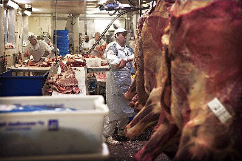 INGEN IDYLL: Besøksbondegårder gir barna et urealistisk bilde av matproduksjon, mener forbruksforsker Runar Døving. Han vil i stedet sende barna skal besøke slakterier, slik at de kan se hva som virkelig foregår når dyrene blir til mat. Her fra Slakteri Axel Andersen A/S i Drammen. Foto: MATTIS SANDBLAD