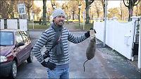 Monster-rotte forspiste seg på proteintilskudd