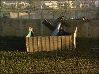 Naboene forteller: Slik ble bin Laden drept
