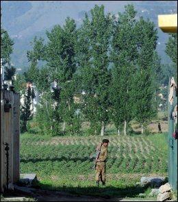 MILITÆRBY: Abbottabad er en pakistansk by stappfull av militære. Foto: AFP