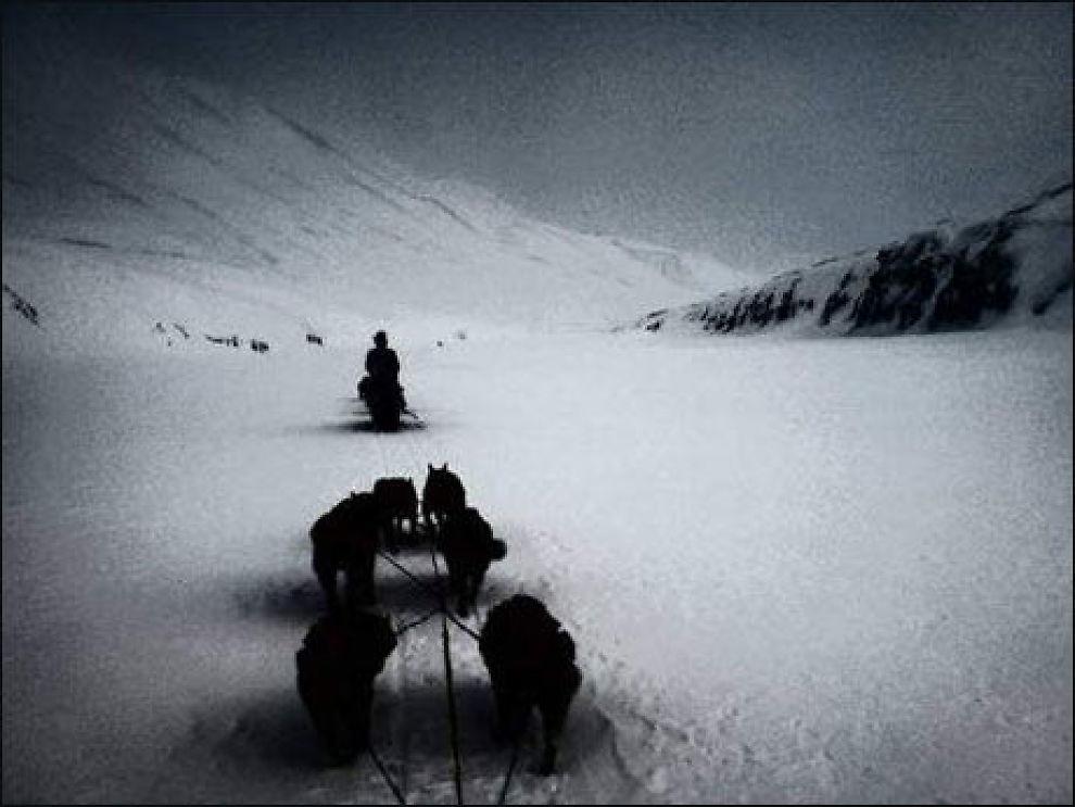 Dette bildet er tatt med mobilkamera, og deltok i en internasjonal konkurranse om mobilbilder. Det gikk ikke til topps, men er et godt komponert bilde, mener redaksjonen i akams. Motivet er hentet fra Svalbard. Foto: Alexander Rafaelsen