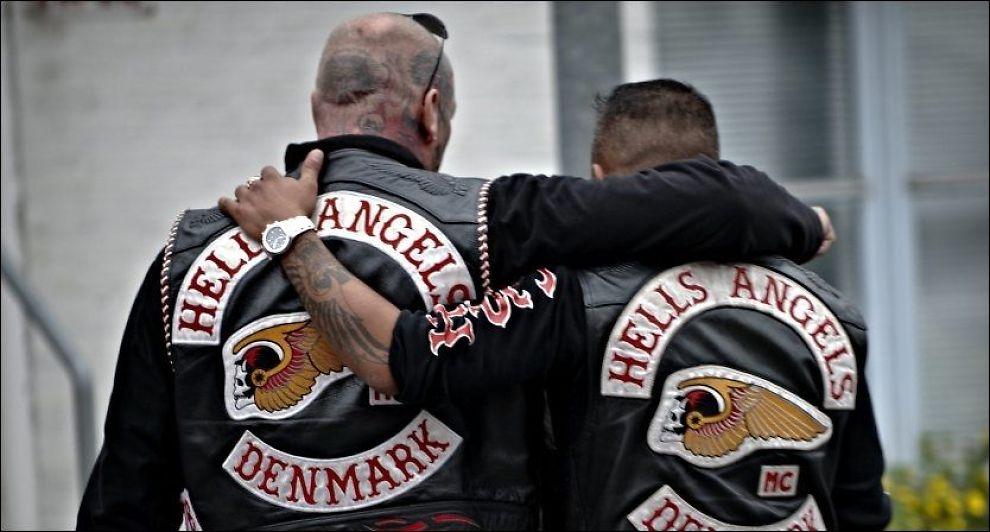 hells angels medlemmer dmt for .