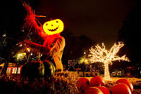 Halloweenfeiring ti dager til ende i København
