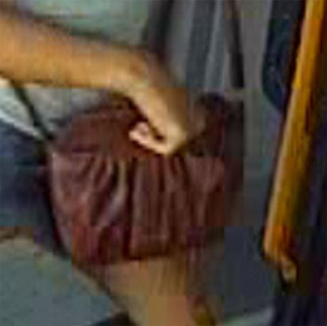 VESKEN: Sigrid Giskegjerde Schjetne bar på en brun skinnveske da hun forsvant. Foto: Politiet