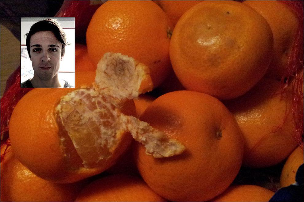 FIKK JULESJOKK: Da Torstein Landaas Storli (innfelt) skulle spise klementinene på bildet fikk han en ubehagelig overraskelse. På klementinene kan det sees tydelige hull etter stikk. Foto: PRIVAT