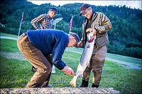Spår laksenedtur i Midt-Norge