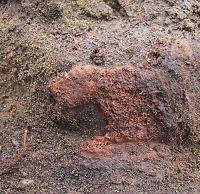 Steingammelt skallefunn i Vestfold
