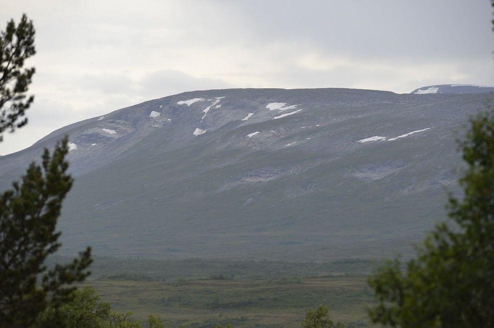 Familie på fire truffet av lynet i Sør-Trøndelag - VG