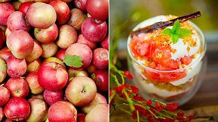 Middag, drikke og dessert: Slik bruker du norske epler i matlagingen