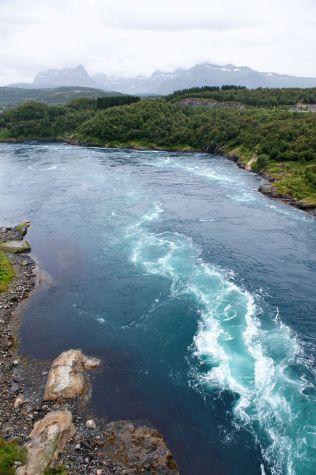 <p>TURISTATTRAKSSJON: Saltstraumen er en av verdens sterkeste tidevannstrømmer.</p>