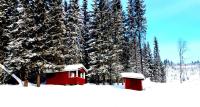 Er dette Norges billigste hytte?