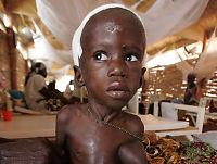 Går mot den verste sultkrisen siden andre verdenskrig