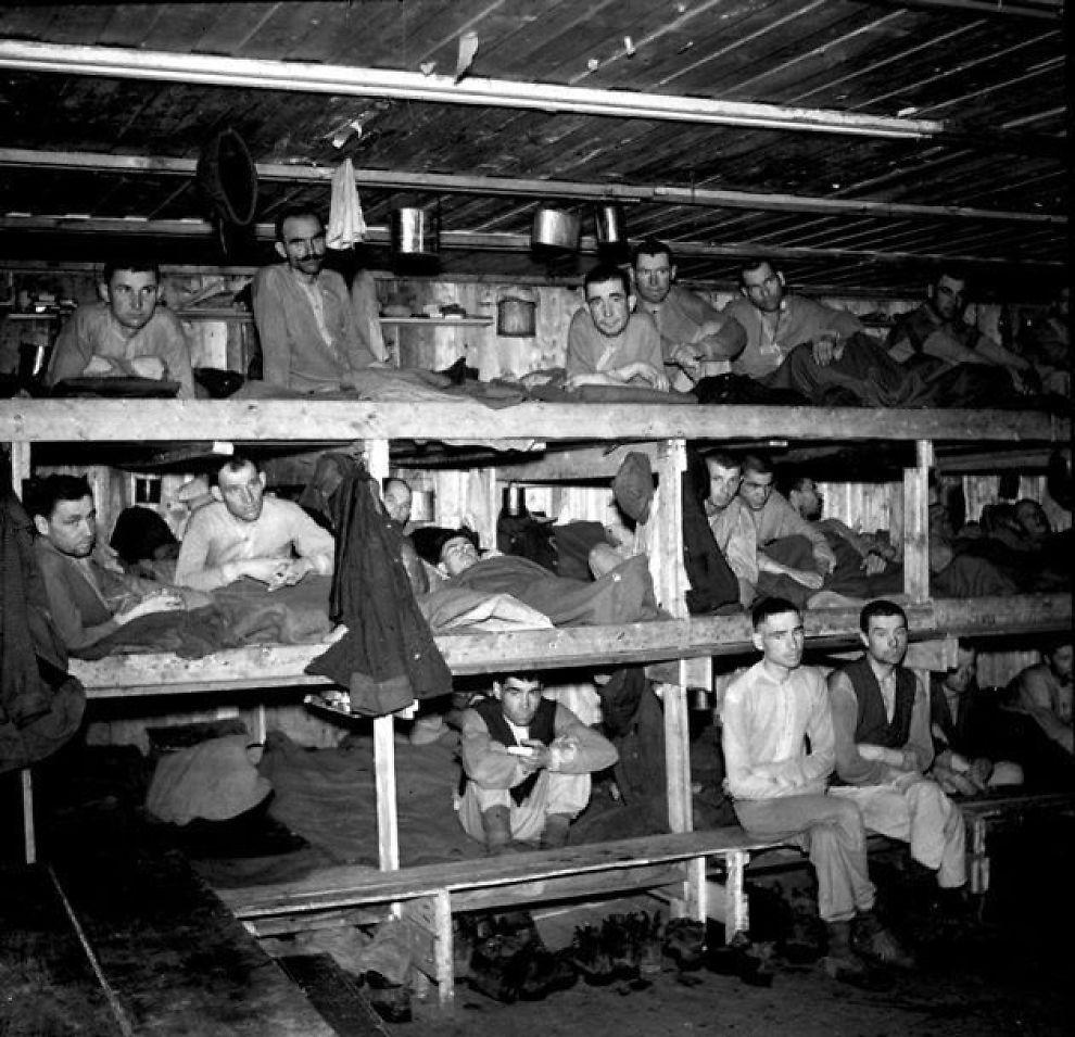 <p><b>SLAVER:</b> – Da leirene langs Nordlandsbanen åpnet 8. mai 1945 var norske leger sjokkert over hva de så. Legen Dag Fodstad skrev en rapport 14. mai om forholdene i noen av leirene der jernbaneslavene holdt til når de ikke arbeidet, skriver Bjørn Westlie.</p>