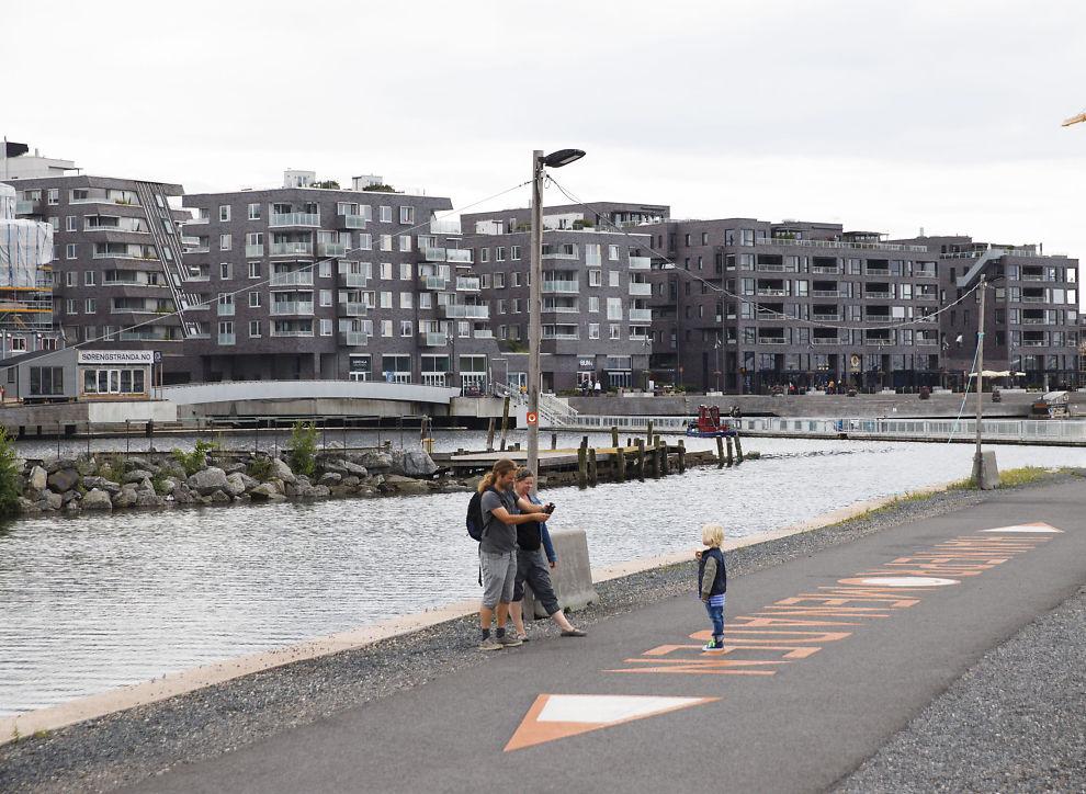 <p>BOLIGFEST: Stadig flere nordmenn kjøper seg flere boliger. Her fra den pågående utbyggingen på Sørenga i Oslo.</p>