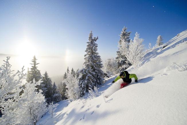<p>PUDDERLØYPER: Forholdene skal bli enda bedre for pudderkjøring på Kvitfjell denne vinteren. Foto: VEGARD BREIE, KVITFJELL ALPINANLEGG</p>