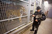 «Synne» holder dyrene innendørs