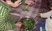Innbyggere forteller VG om utsultet syrisk by: – Folk spiser blader, katter og hunder