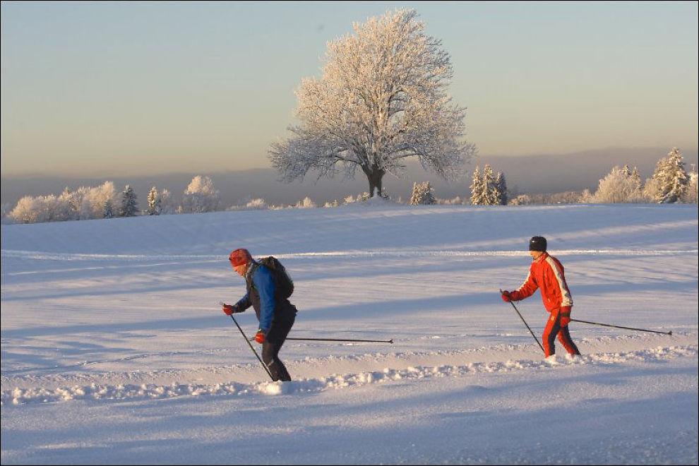 KALDT: De første dagene av vinterferien blir kalde og fulle av sol de fleste stedene i landet. Men i helgen kan hele landet vente seg mildere vær- Foto: Scanpix