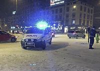Politiet jaktet elg i Oslo sentrum - skutt av viltnemda