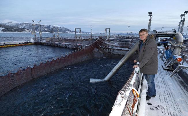 <p>LAKSEMILLIARDÆR: Inge Berg driver lakseprodusenten Nordlaks fra Stokmarknes i Vesterålen.</p>