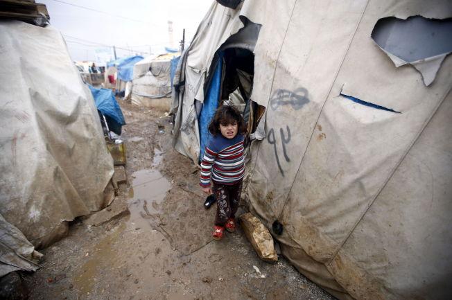 <p>TELTLEIR: Forholdene for flyktningene på den syriske siden av grenseovergangen Bab al-Salam er miserable.</p>