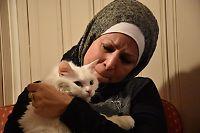 Mistet familiekatten under flukten fra Irak – gjenforent i Trøndelag