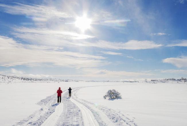 <p>STRÅLENDE SOL: Solskinn og nykjørte løyper møtte skiløpere på vinterferie ved Sulseter i Gudbrandsdalen søndag.</p>