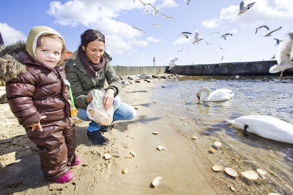<p>VÅRFINT: Teresa Hageland (33) med datteren Ada Berg (2) mater fuglene i Tresse, Kristiansand.</p>