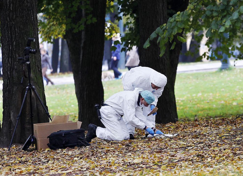 <p>REKORDÅRET: Kriminalteknikere fra Oslo politidistrikt sikrer her spor i forbindelse med en anmeldt voldtekt i Slottsparken i 2011.</p>