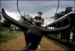 PLASTKVEG: Leif R. Holstad (73) trener påå fange kveg med lasso. Her står kveget bom stille, men senere i uken skal han og de andre gjestene drive levende kveg. Foto: JAN JOHANNESEN