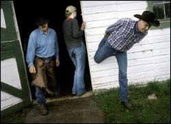 STREKKER FERIEN: En morgen på hesteryggen kan gjøre mye med utrente bymuskler. Arild Christiansen strekker ut i et forsøk på å dempe den verste stølheten. Foto: JAN JOHANNESEN