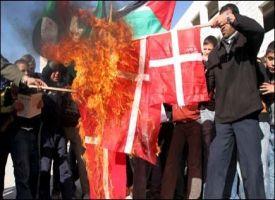 STERKE PROTESTER: Demonstranter brenner den danske flagget på Hebron under protester mot Muhammed-tegningene i går. Foto: EPA