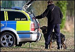 PÅ JAKT: Politi med hunder har leitet etter spor på gårdstomta siden søndag. Nå skal store pengesummer ha blitt funnet. Foto: EPA