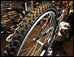 UNNGÅ SOLLYS: Sett sykkelen i skyggen hvis mulig, sollys påvirker dekkets levetid. Foto: Frode Hansen.