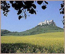 NATUR: I naturskjønne omgivelser troner ruinene etter Spis-slottet; Spisska Nova Ves. Foto: AP / Milan Kosec