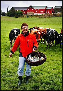 OSTEPRODUSENT: Astrid Aasen på Gangstad sammen med sitt røde norske fe, produserer delikatesseoster for den nysgjerrige gane. Blåosten hennes ble kåret til beste gårdsost i Trøndelag i fjor. Foto: Magnar Kirknes