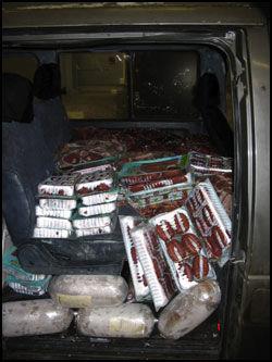 REKORDØKNING: Denne bilen ble stoppet på Svinesund i januar med 1050 kilo smuglerkjøtt. Beslagene i år har økt voldsomt sammenlignet med fjoråret, opplyser tollvesenet Foto: TOLLVESENET
