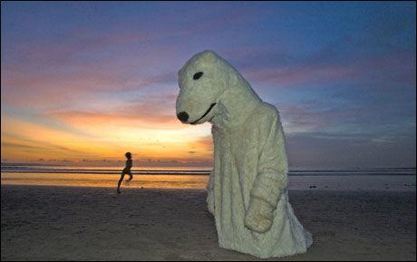 KLIMATRUSSELEN: Havnivået kan stige dobbelt så raskt som FNs klimapanel har spådd i dette århundret, frykter forskere. Frykten deles nok av denne Greenpeace-aktivisten i isbjørndrakt på klimamøtet i Bali. Foto: Reuters