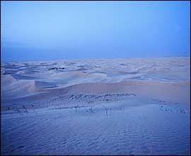 VAKKER MORGEN: Soloppgangen farger ørkenlandskapet blårosa. Foto: Terje Bringedal