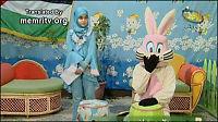 Barnetv-kanin dømt for tyveri