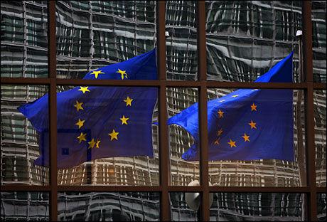 LØSNINGEN? Fagbevegelsen på Island mener at EU-medlemskap og Euro som valuta vil hjelpe på finanskrisen som har rammet landet. Foto: AFP