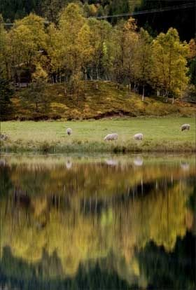 FINVÆR: Helt i nord og helt i sør er det mulig å finne godt og behagelig høstvær de nærmeste dagene. Foto: Scanpix