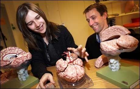 Teri Krebs og Pål-Ørjan Johansen har fått midler fra Norges forskningsråd til å forske på mdma, også kalt ecstasy. Foto: OLE MORTEN MELGÅRD