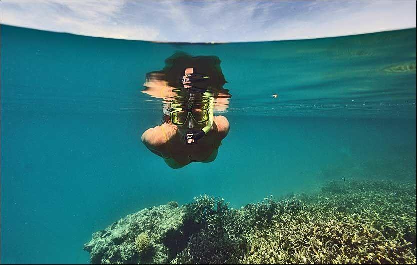 GOD SIKT: Krystallklart vann med 30 meter sikt gir en fantastisk opplevelse av det rike livet rundt badeparadiset Layang-Layang. Foto: Peter Hauerbach
